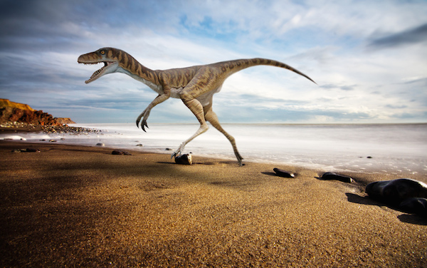 Dinosaur Trail on the Isle of Wight