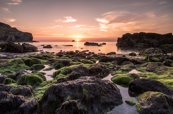 St Agnes Beach in Cornwall - Britain's best rockpools