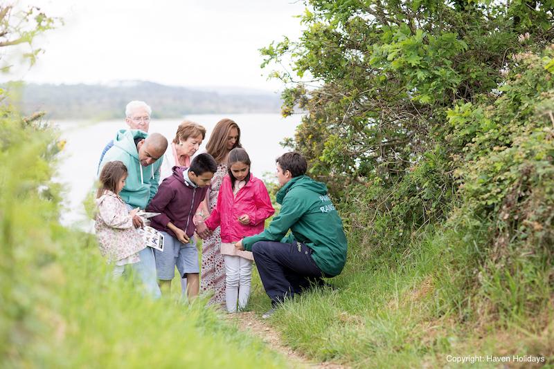 Investigating wildlife close to the coast