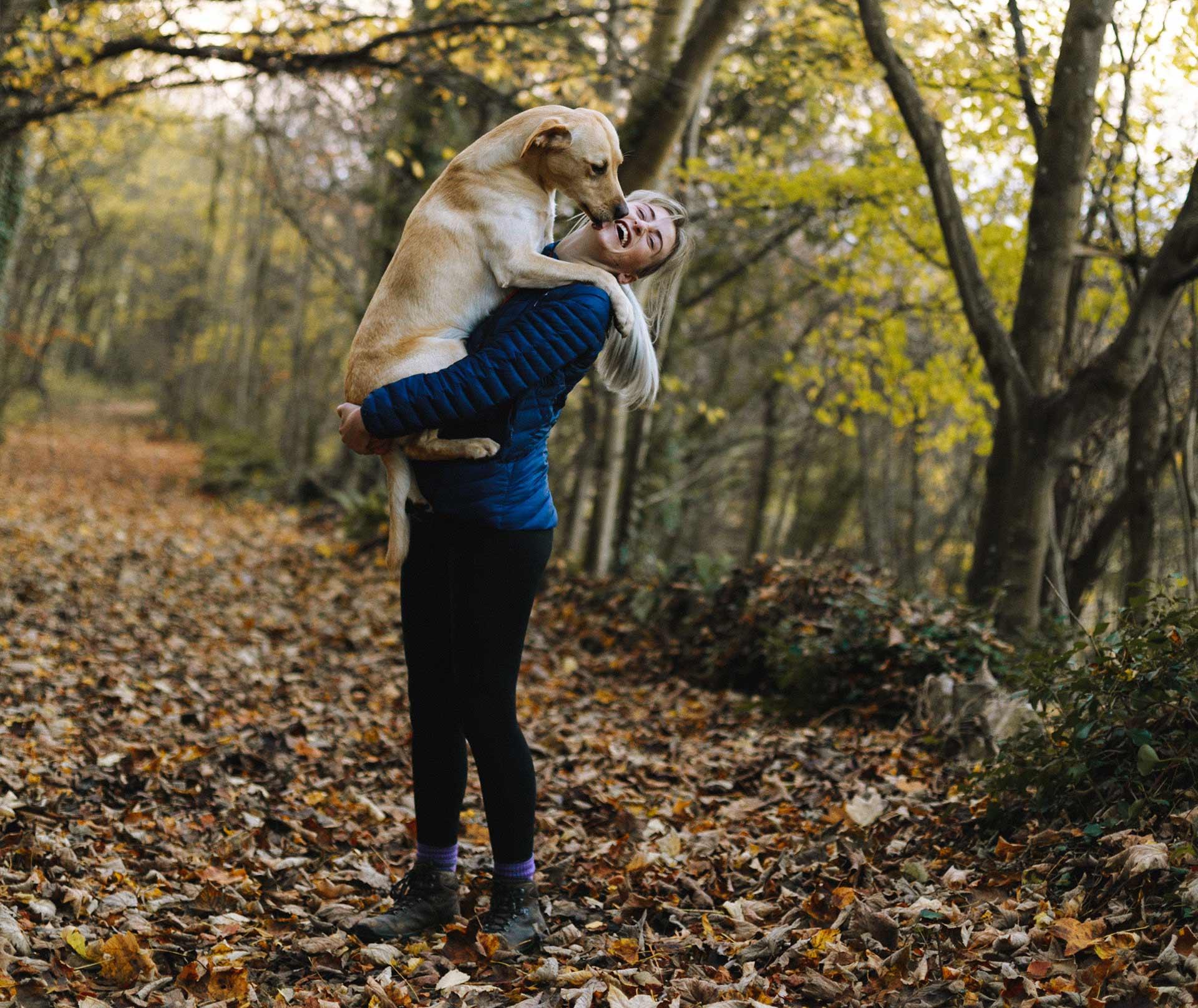 Dog-Friendly Lodges